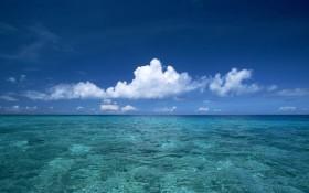 beach_of_hawaii